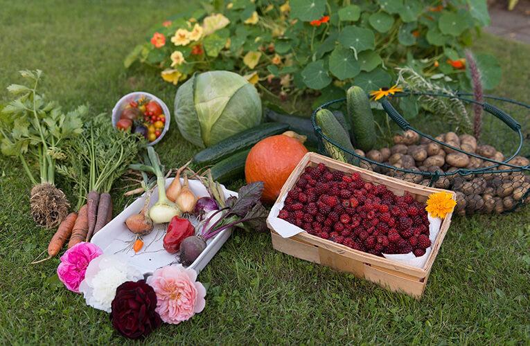 köyde bahar, ilkbahar, sebze sepeti