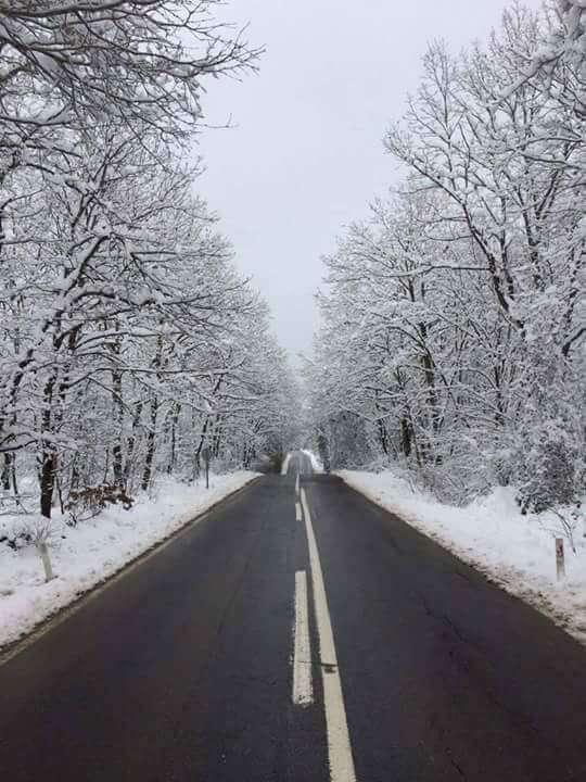 köyde kar manzarası