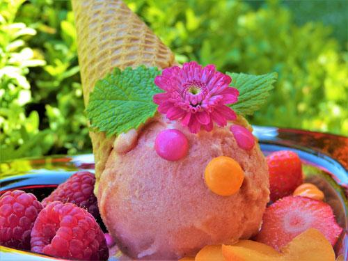 Ev Yapımı Dondurma : Organik Lezzetler