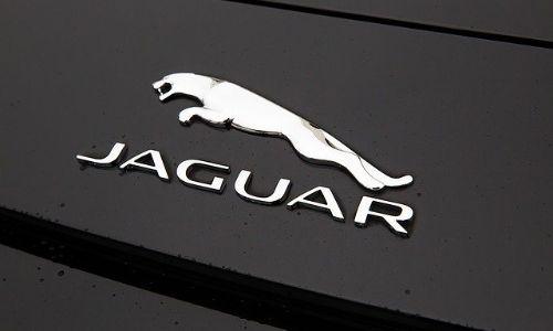 jaguar logosu