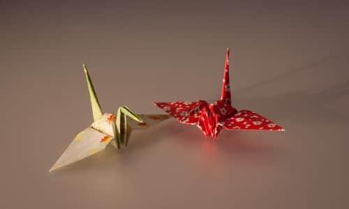 Evde yapılabilecek hobiler, koronavirüs karantina günlerinde, korona günleri evde, evde fasulye yetiştirmek, teraryum yapmak, origami