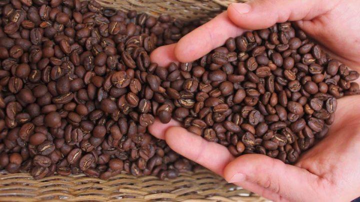 Kahve ve Türk Kahvesinin Hikayesi