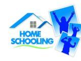 online eğitim modeli, online eğitim
