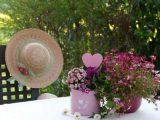 yaz çiçekleri, yaz çiçekleri nelerdir, yaz çiçeği, ortancalar,