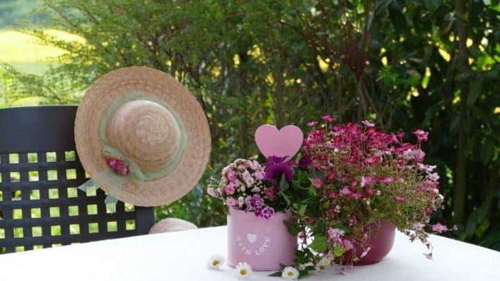 Yaz Çiçekleri Nelerdir?
